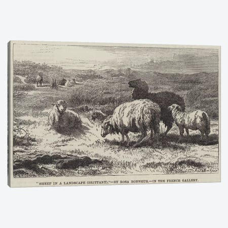 Sheep In A Landscape, Brittany (Illustration For The Illustrated London News), 23 April 1859 Canvas Print #BMN7551} by Rosa Bonheur Canvas Wall Art