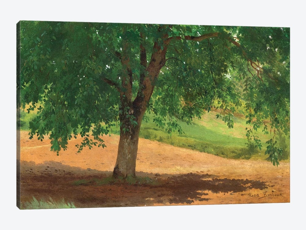 Study Of Light And Shade by Rosa Bonheur 1-piece Canvas Artwork