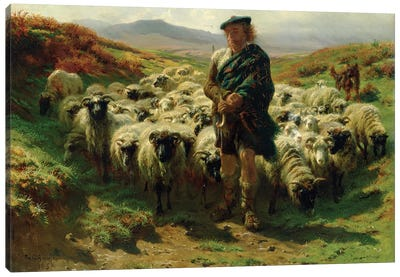 The Highland Shepherd (Oil On Canvas), 1859 Canvas Art Print