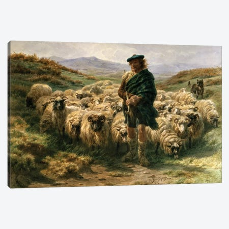The Highland Shepherd (Watercolour) Canvas Print #BMN7558} by Rosa Bonheur Canvas Artwork
