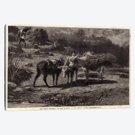 The Three Brothers (Illustration For The Illustrated London News), 13 April 1861 Canvas Print #BMN7561} by Rosa Bonheur Art Print