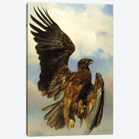 The Wounded Eagle, c.1870 Canvas Print #BMN7562} by Rosa Bonheur Art Print