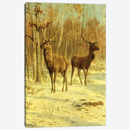 Two Stags In A Clearing In Winter Canvas Print #BMN7563} by Rosa Bonheur Canvas Print