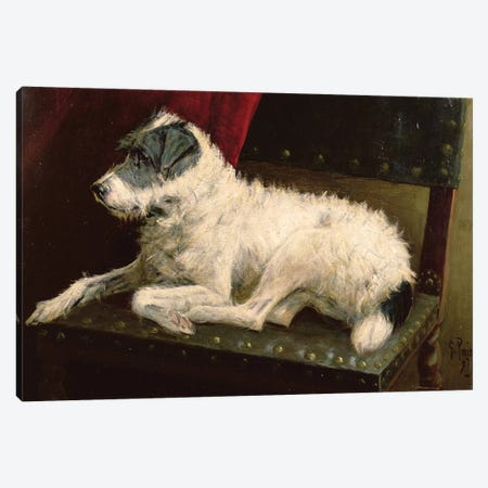 Waiting for Master Canvas Print #BMN762} by George Paice Canvas Print
