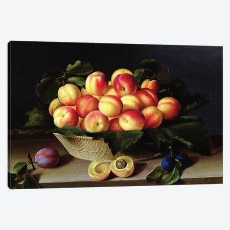 Basket Of Apricots, 1634 Canvas Print #BMN7634} by Louise Moillon Canvas Artwork