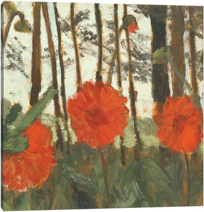 Poppies On The Edge Of A Wood Canvas Art Print