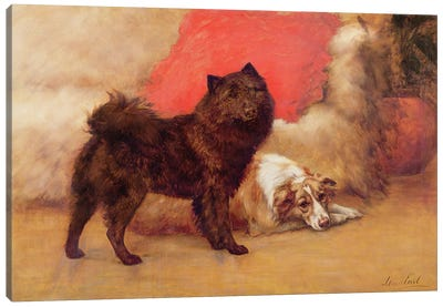 The Red Cushion Canvas Art Print