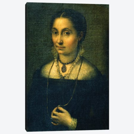 Portrait Of Elena Canvas Print #BMN7679} by Sofonisba Anguissola Canvas Print