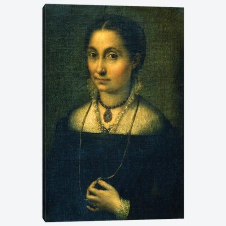 Portrait Of Elena Canvas Print #BMN7679} by Sofonisba Anguissola Canvas Print