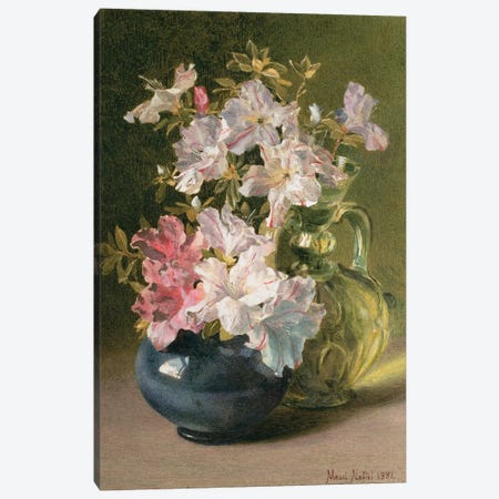 Azaleas in a Jug Canvas Print #BMN768} by Maud Naftel Canvas Print