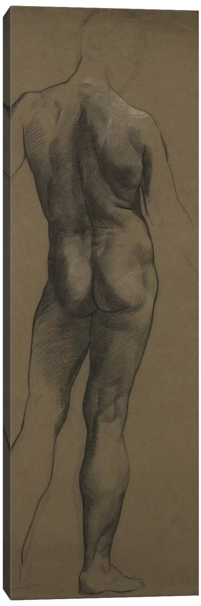 Male Nude Study Canvas Art Print