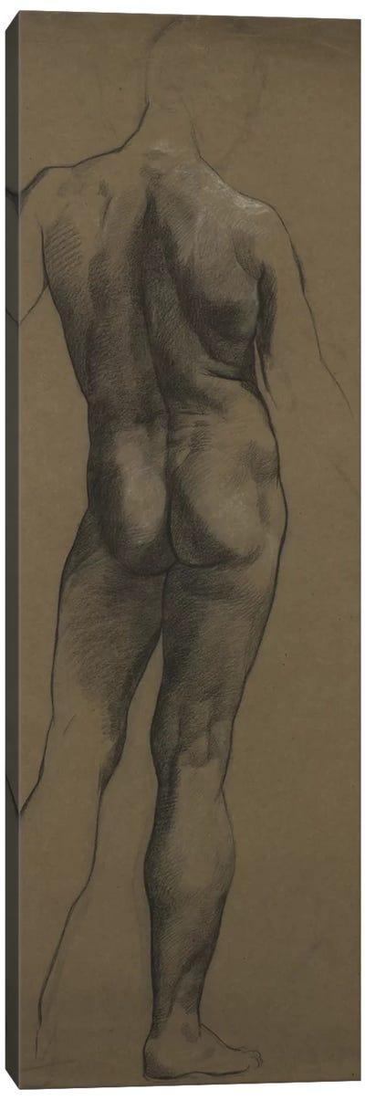 Male Nude Study Canvas Art Print
