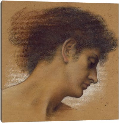 Study Of A Head II Canvas Art Print