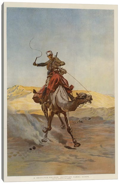 A Despatch-Bearer Egyptian Camel Corps Canvas Art Print