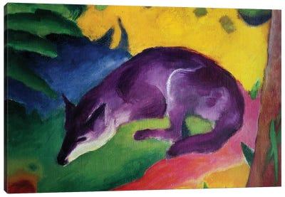 Blue Fox, 1911  Canvas Art Print