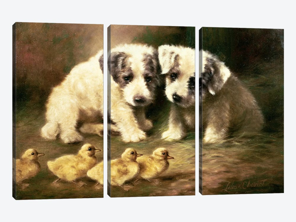 Sealyham Puppies and Ducklings by Lilian Cheviot 3-piece Canvas Print