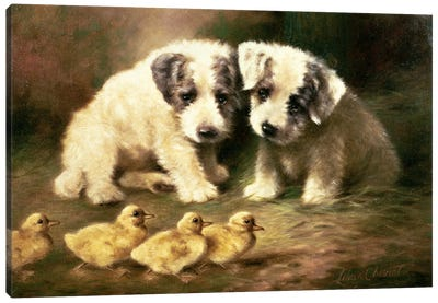 Sealyham Puppies and Ducklings Canvas Art Print