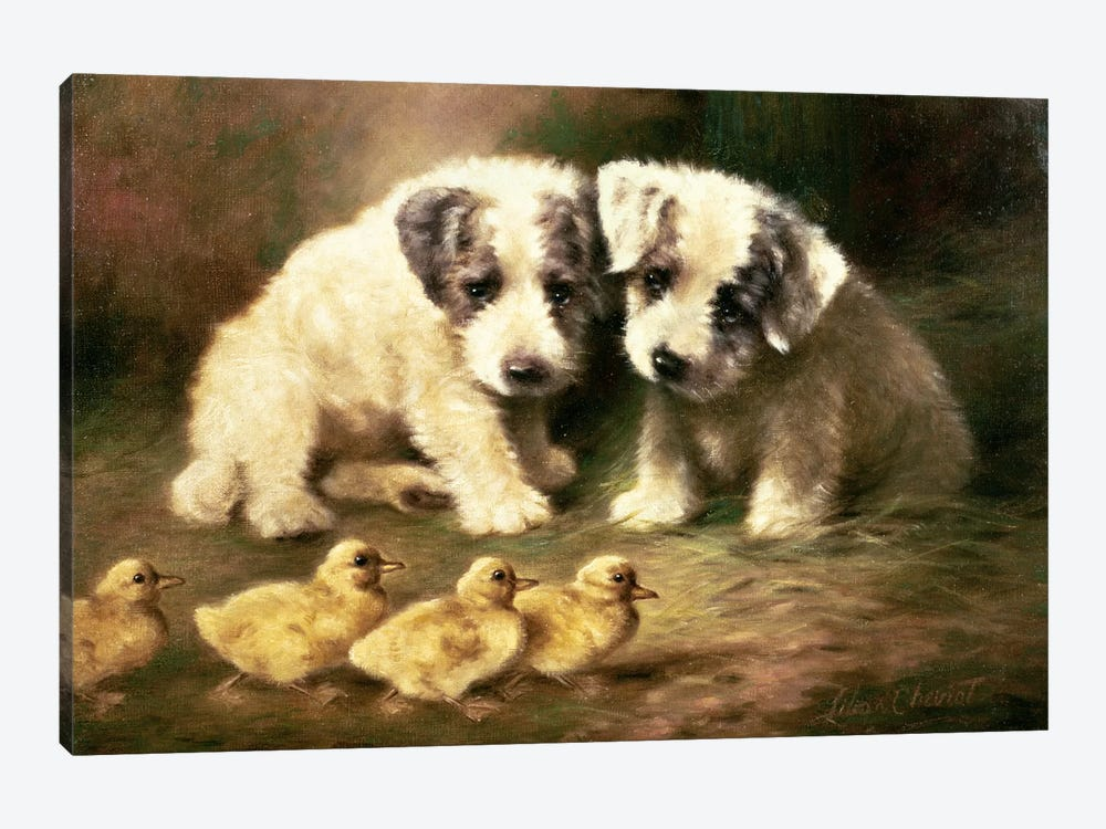 Sealyham Puppies and Ducklings by Lilian Cheviot 1-piece Canvas Art Print