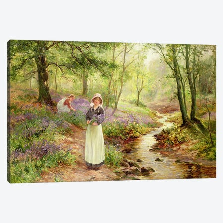 The Bluebell Glade Canvas Print #BMN813} by Ernest Walbourn Canvas Print