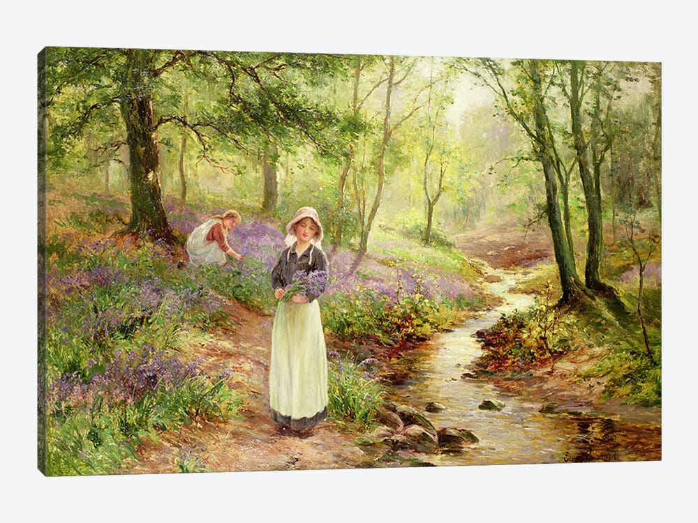The Bluebell Glade by Ernest Walbourn 1-piece Canvas Artwork