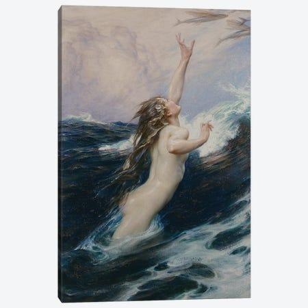 Flying Fish, 1910  Canvas Print #BMN8206} by Herbert James Draper Art Print