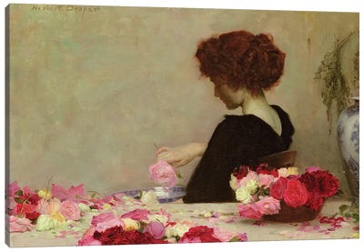 Pot Pourri, 1897  Canvas Art Print