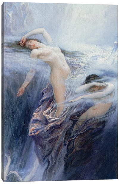 Study for 'Clyties of the Mist',  Canvas Art Print