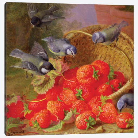 Still Life with Strawberries and Bluetits Canvas Print #BMN830} by Eloise Harriet Stannard Art Print