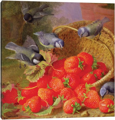 Still Life with Strawberries and Bluetits Canvas Art Print