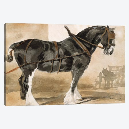 Harnessed black horse Canvas Print #BMN8315} by Theodore Gericault Canvas Art Print