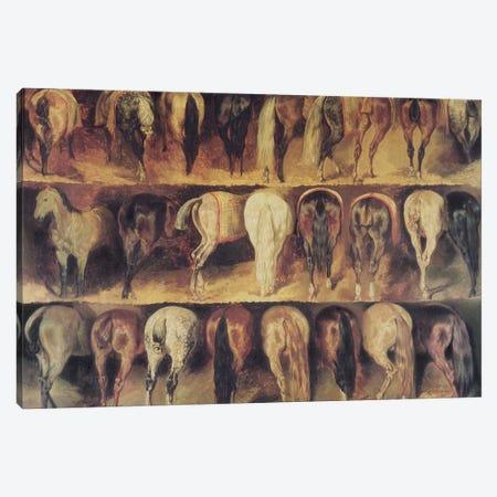 Horses' Hindquarters  Canvas Print #BMN8316} by Theodore Gericault Canvas Print