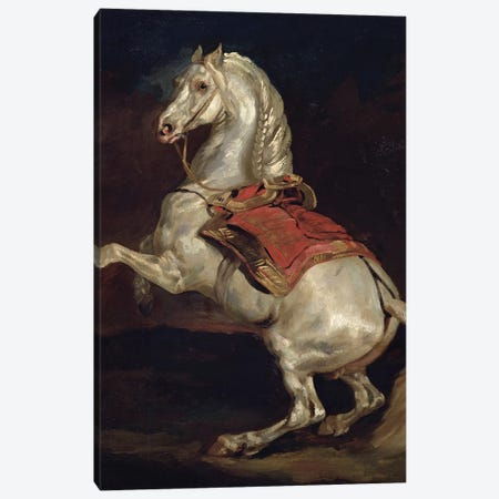 Napoleon's Stallion, Tamerlan  Canvas Print #BMN8320} by Theodore Gericault Canvas Art Print