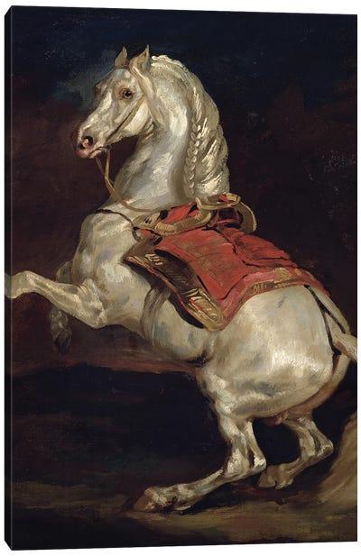 Napoleon's Stallion, Tamerlan  Canvas Art Print