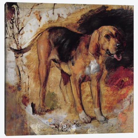A Study of a Bloodhound, 1848  Canvas Print #BMN8327} by William Holman Hunt Canvas Artwork