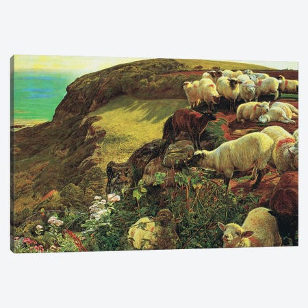 Strayed sheep Canvas Print #BMN8338} by William Holman Hunt Canvas Wall Art