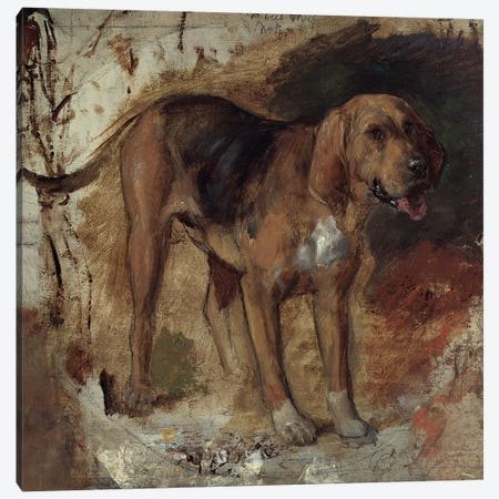 Study of a Bloodhound, 1848 3-Piece Canvas #BMN8339} by William Holman Hunt Canvas Wall Art