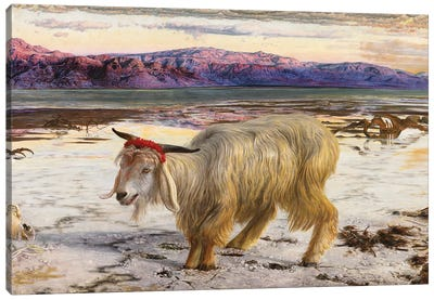 The Scapegoat, 1854  Canvas Art Print