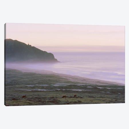 Big Sur Canvas Print #BMN8359} by Carli Choi Canvas Art
