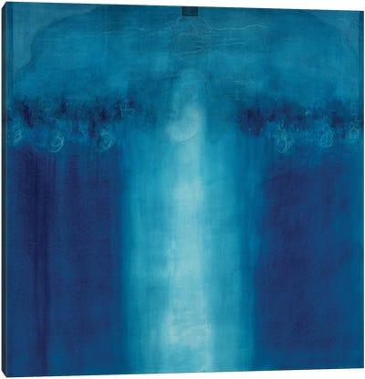 Untitled blue painting, 1995  Canvas Art Print