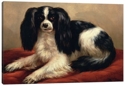A King Charles Spaniel Seated on a Red Cushion Canvas Art Print