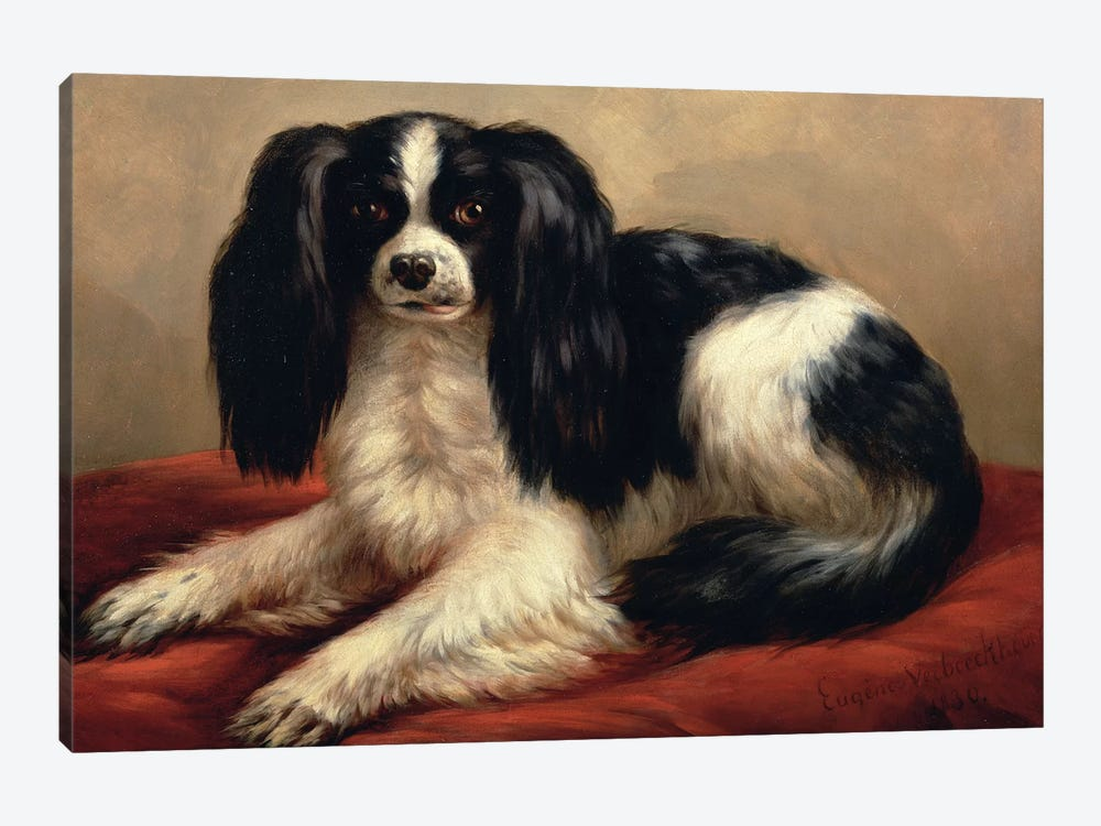 A King Charles Spaniel Seated on a Red Cushion by Eugene Joseph Verboeckhoven 1-piece Canvas Wall Art