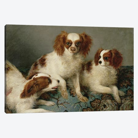 Three Cavalier King Charles Spaniels on a Rug  Canvas Print #BMN838} by English School Canvas Art Print