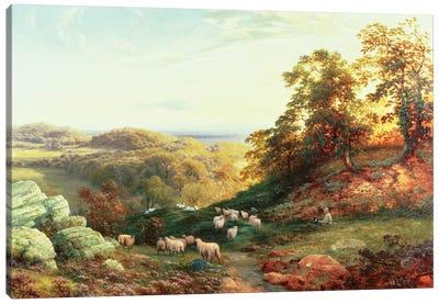Watching the Flock Canvas Art Print