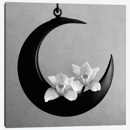 The Orchids Of The Moon, 2006  3-Piece Canvas #BMN8414} by Hiroyuki Arakawa Canvas Wall Art