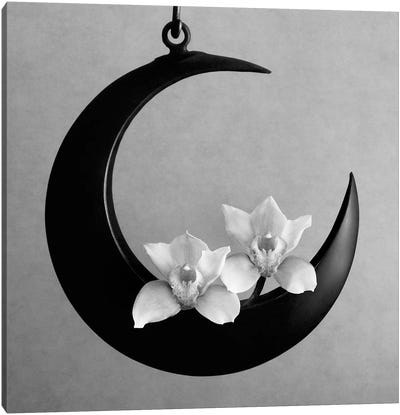 The Orchids Of The Moon, 2006  Canvas Art Print