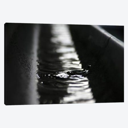 Rainwater Canvas Print #BMN8435} by K.B. White Canvas Wall Art