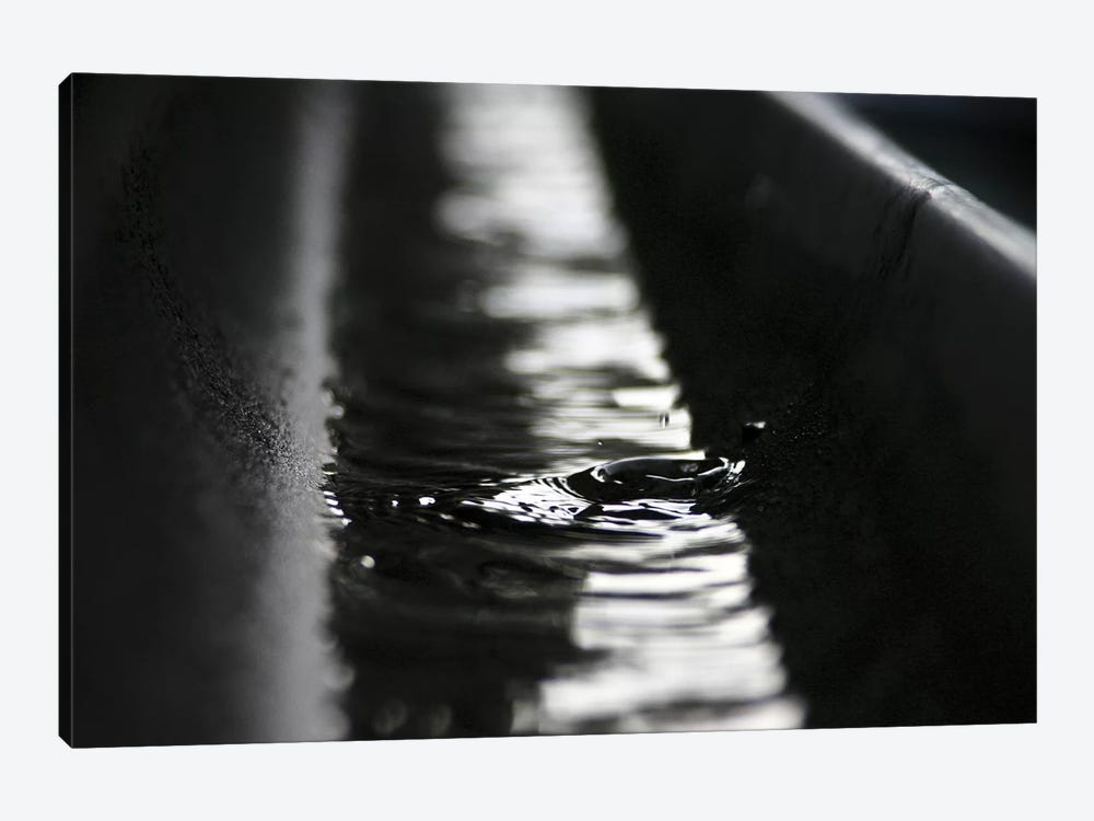 Rainwater by K.B. White 1-piece Canvas Print