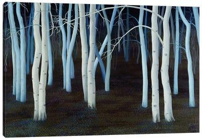 Mystic, 2004  Canvas Art Print