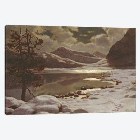 Moonlight in Winter  Canvas Print #BMN845} by Ivan Fedorovich Choultse Canvas Art Print