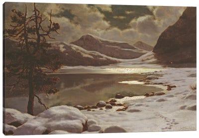Moonlight in Winter  Canvas Art Print